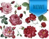 Digital Collage, Digital paper, ROSES Redoute wedding clipart Instant download, digital images, dark pink red rose flowers clipart SALE