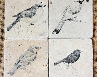 Bird Decor- Coaster Set, Gardener Decor, Bird Gift, Songbird Decor, Nature Decor, Nature Gift, Stone Coaster, Tile Coaster, Tile