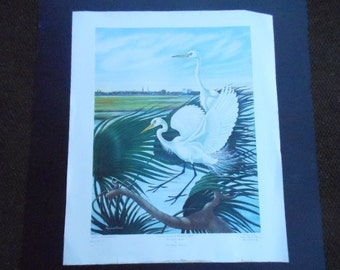 American Egrets with Charleston Skyline Vintage Signed Print Anne Worsham Richardson SC Lowcountry Artist Rare Early Artwork 29x24 No Frame