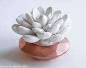 Succulent Sculpture with Interchangeable Geometric Container, Tabletop, Desktop Accessory, Modern Minimalist Home and Office Decor