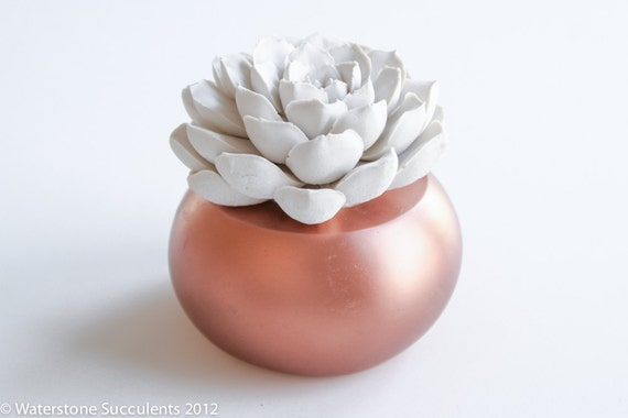 Sale: Succulent Sculpture with Interchangeable Container, Tabletop, Desktop Accessory, Modern Minimalist Home and Office Decor