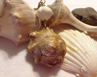 Conch Head Ceiling Fan Pull