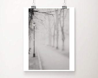 black and white photograph, winter, fog, tree, lamp post photograph, haunting, cambridge photograph, path, still, dark art