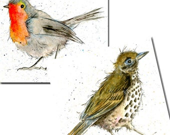 Bird Cards - Robin and Thrush - Pack of 6 - Watercolour, Notelets, Stationery, Blank inside, Garden Birds