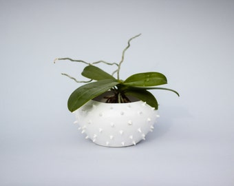 Spiky ceramic white bowl/ ceramic vessel/ ring dish/ ceramic planter/ white/ christmas gift