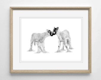 I Love Ewe Limited Edition Print FREE UK DELIVERY