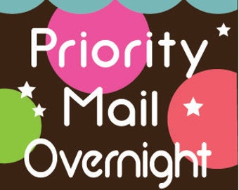 Priority Mail EXPRESS OVERNIGHT Delivery Guaranteed Next Day