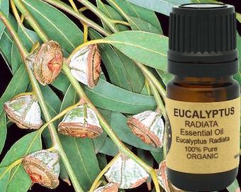 Eucalyptus Essential Oil (Radiata) Organic 5 ml, 10 ml or 15 ml