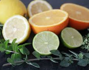 Citrus Herb Premium Fragrance Oil    Available In Several Sizes