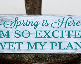 Primitive - Spring is here, I'm so excited I wet my plants wood sign