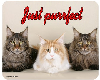 Maine Coon Cat Just Purrfect -  Mouse Mat Mouse Pad