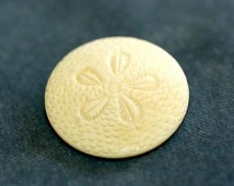 """Bone Sand Dollar Button. Size 1 7/16"""""""