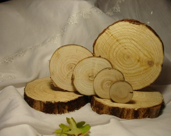 Rustic Tree Slices  Wood, tell me the diameter and I say the price
