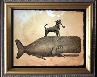 Miniature Pinscher Min Pin Riding Whale - Vintage Collage Art Print on Tea Stained Paper - Vintage Art Print - Vintage Paper