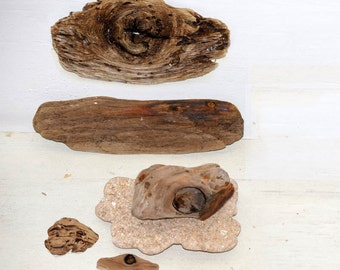 Driftwood Eyes: 5 Pieces of Driftwood & 1 Sea Stone Base for Driftwood Art, Beach Decor, Mermaid Party, Arts and Crafts