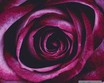 Purple Rose PDF Cross Stitch Pattern