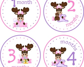 Monthly Baby Milestone Stickers Baby Girl Baby Shower Gift One-Piece Baby Stickers Monthly Baby Stickers Baby Month Sticker Baby Moose 708