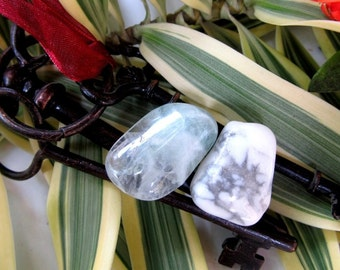 Clarity, Focus And Procastination Healing Crystal Set, Fluorite Healing Stone, Howlite Crystal, Magick, Healing Stones, Feng Shui, Optimism