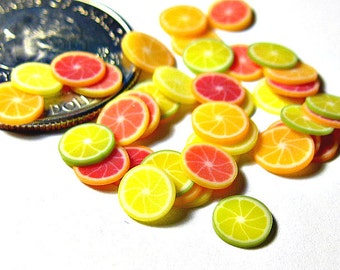FLASH SALE Dollhouse Citrus Fruit Slices 40pcs