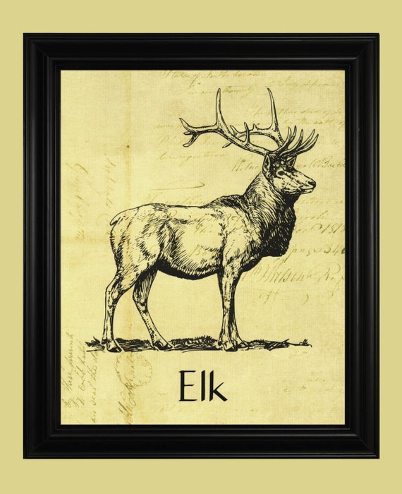 Ledger Art Of Elk : Elk art print black and white illustration wildlife