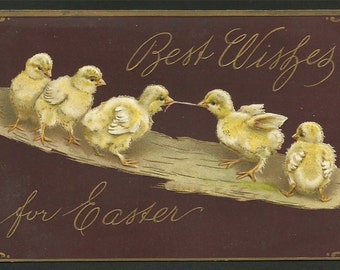 Vintage Embossed Postcard 1909 Easter Greetings  Ducklings on a Log with a Worm  (1307)
