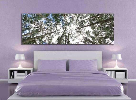 Big Aspen Tree Photograph Large Panoramic Canvas Print Nature
