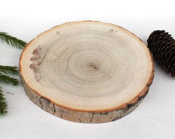 """Rustic 7"""" Wood Slabs. Rustic Cake Stands. Rustic Tree Branch Slices for Craft. Natural Wood Slices"""