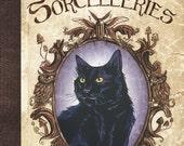 Chats, charmes et sorcelleries livre illustré