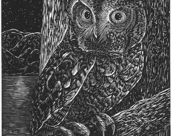 Screech Owl - Limited Edition Letterpress Print