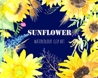 Sunflower watercolour clip art, Digital Watercolor clipart hand drawn. Big SET Sunflower, rustic wedding, bright, yellow flowers invitations