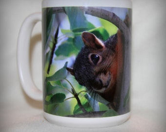 Peek-a-Boo Squirrel Mug! Stevie was a  releasable rescue squirrel who is just beautiful and gentle!