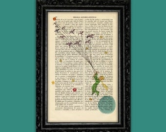 The Little Prince illustrations Le Petit Prince prints old book art Christmas Gift Nursery Dictionary Wall Exupéry Print and poster (Nº8)