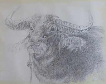 A BULL - Original SILVERPOINT Drawing - Unique Artwork, 32×41cm, Home Decor, Living Room Wall Decor, Wall Hanging Art, Animal