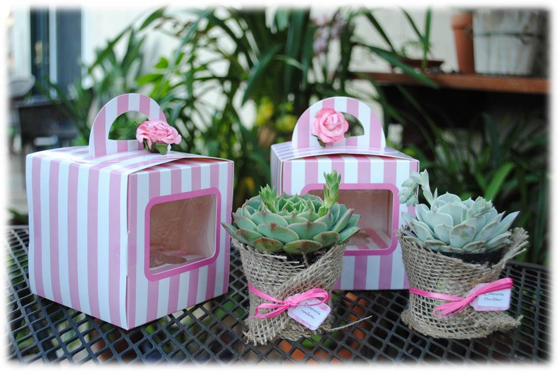 Baby Shower Thank You Gift Boxes : Thank you gift succulent box wedding or baby shower