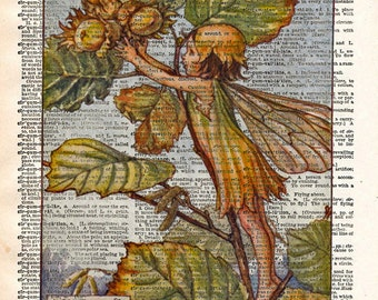 Vintage Flower Fairy art - Hazel Nut Fairy - Fairy art print,  Dictionary print art