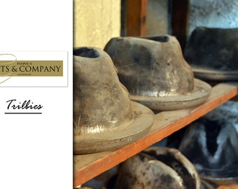 Build Your Own Trilby Hat