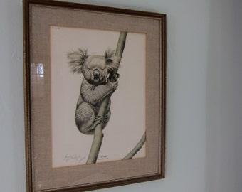 Vintage Guy Coheleach Koala Print Framed and Signed 1972