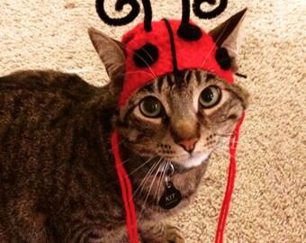 Ladybug Cat Hat Costume