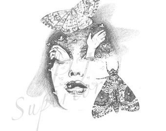 Mistress Moth Original Pencil Drawing