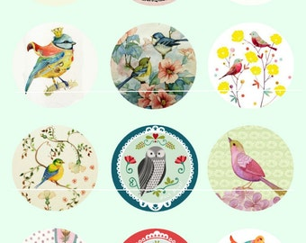 Birds and flowers Vintage Chic 12 Images/drawings/collage sheet digital for 25mm round cabochon