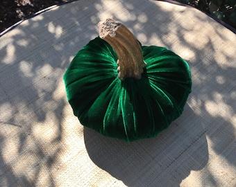 30 One Extra Large Dark Green  Silk Velvet Pumpkin with a Real Pumpkin Stem #30
