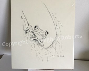 Frog Drawing By Meaghan Roberts