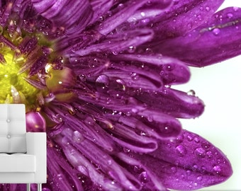PURPLE FLOWER CLOSEUP photography wall mural - Self adhesive removable & repositionable wallpaper - Interior decor by GraphicsMesh