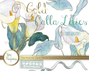 Alcatraz Calla Lily Lilies clip art images watercolor hand painted PNG transparent background and JPG  blog cards invitations scrapbooking