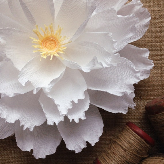 Oversized paper flower crepe paper wall by for Crepe paper wall flowers