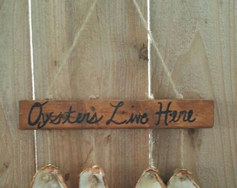 Oyster Shell wall decor
