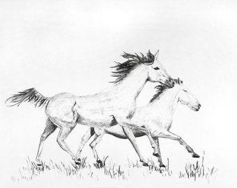 Charcoal drawing, GICLEE PRINT, Horses