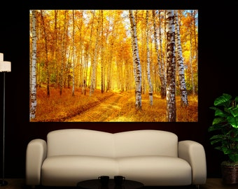 Fall Trees Autumn Birch Tree Forest Photo Wall Art Canvas Giclee Print - Highest Quality Canvas Den Prints - Not stretched or framed