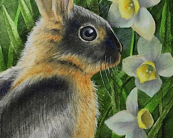 Bunny Rabbit and Flowers Art by Melody Lea Lamb ACEO Print #179