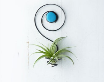 Air Plant Holder- Spiral Wall Hanging with Glass Bead